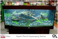 Aquarium with Black Pepple and l...