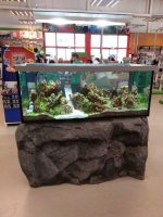 Aquarium with lava stones