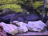 Glimmer Wood Rock 25 kg mixed ca...