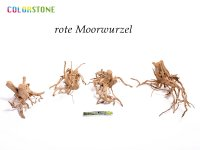 red moor root - 10 kg mixed carton